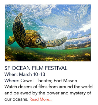 SF Ocean Film Festival